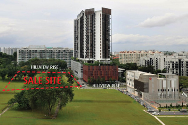 Nine bids received for Hillview Rise GLS site despite technical evaluation in two-envelope tender system - EDGEPROP SINGAPORE